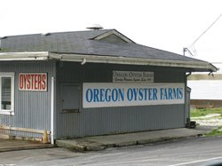 Oregon Oyster Farms