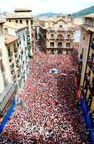 Running of the Bulls, Inc - Day Tours