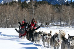 Pagosa Dogsled Adventures - Private Day Tours