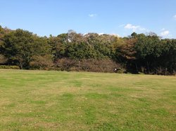Usui Castle Site