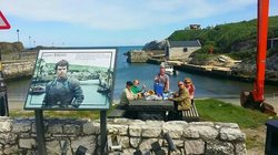 Giants Causeway & Game of Thrones Tour by Belfast Famous Black Cabs