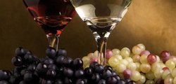 Tourtlee Wine, Olive Oil and Honey Tasting Tour & Butterfly Valley