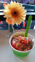 Sweetz Froyo And More