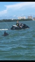 H2O Jet Ski Rentals & Tours of Clearwater Beach