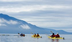 Ecosummer Expeditions - Day Tours