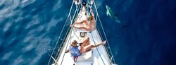 Portiate Charters - Day Tours