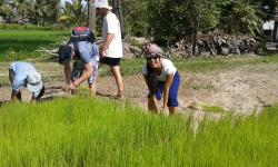 A Day in the Life of a Cambodian Farmer & Countryside Experience