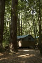 Big Basin Tent Cabins