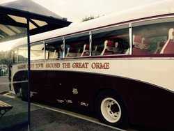 Alpine Coaches - Great Orme Tour