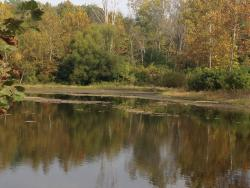 Possum Creek MetroPark