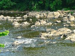Lower Haw River State Natural Area