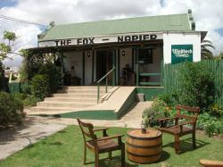 The Fox in Napier
