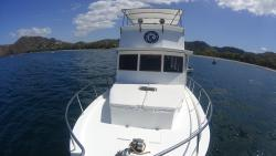 Single Fin Surf Charters - Day Cruises