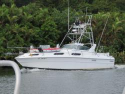 Adventure Charters Belize