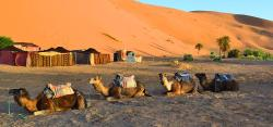 Marrakech Safari Tours - Day Tours
