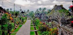 The Cheapest Travel Bali - Day Tours