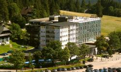 Top Feldberg Hof Hotel