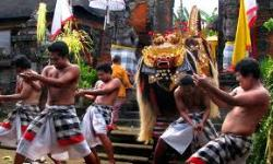 Bali Driver Holiday - Day Tours