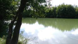 Indiana River