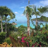 French Leave Eleuthera - Harbour Village