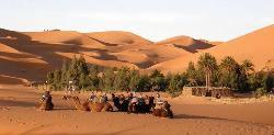 Marrakech shared trips - Day Tours