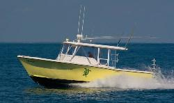 Tortuga Dive Charters - Day Tours