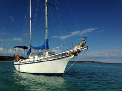 Southern Cross Sailing - Day Tours