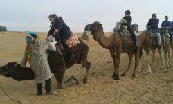 Berber Travel - Day Tours