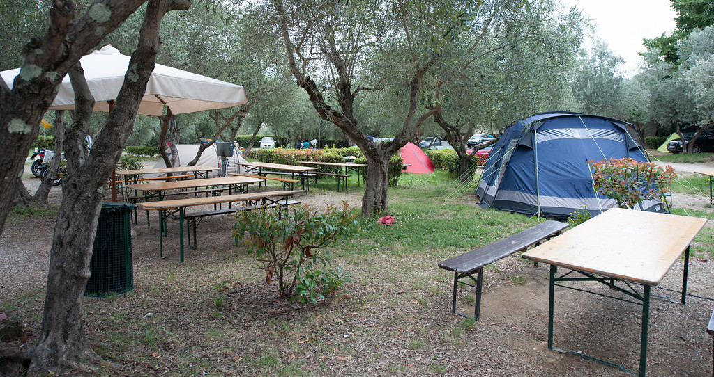 Plus Camping Michelangelo