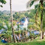 The Water Park in the Jungle