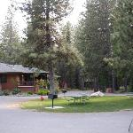 The Woodland Cabins