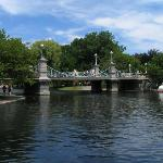 Boston Public Garden is 30 miles south of the hotel.