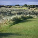 Pacific Dunes