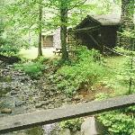  stream and cabin