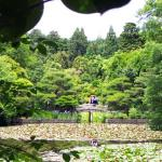 The lovely grounds of Ryoan-ji