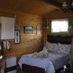 Denali Lakeside Lodging