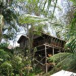 Wasai Maldonado Eco Lodge