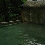 Hot Spring on Mega Combo Tour