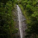 Manoa Falls