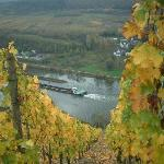 The Mosel River from the vinyards