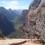 Angel's Landing is a must-do hike! Here's the view from the top.