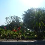 Gardens at the Ghion