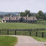  A Horse Farm Barn - Versailles, KY