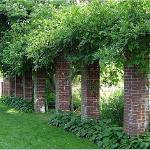 Brick columns covered in vines