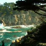 ‪Point Lobos State Reserve‬