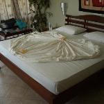 Photo of Hotel Sunflower Beach Negombo