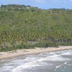 View of Beach