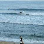 Rincon Surf and Board照片