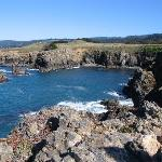 Sea Ranch Shoreline North