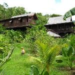 Foto de Tainos Cottages